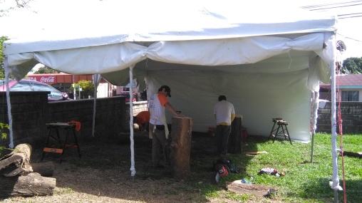 Festival Agroalimentario y Cultural 2016 (6)